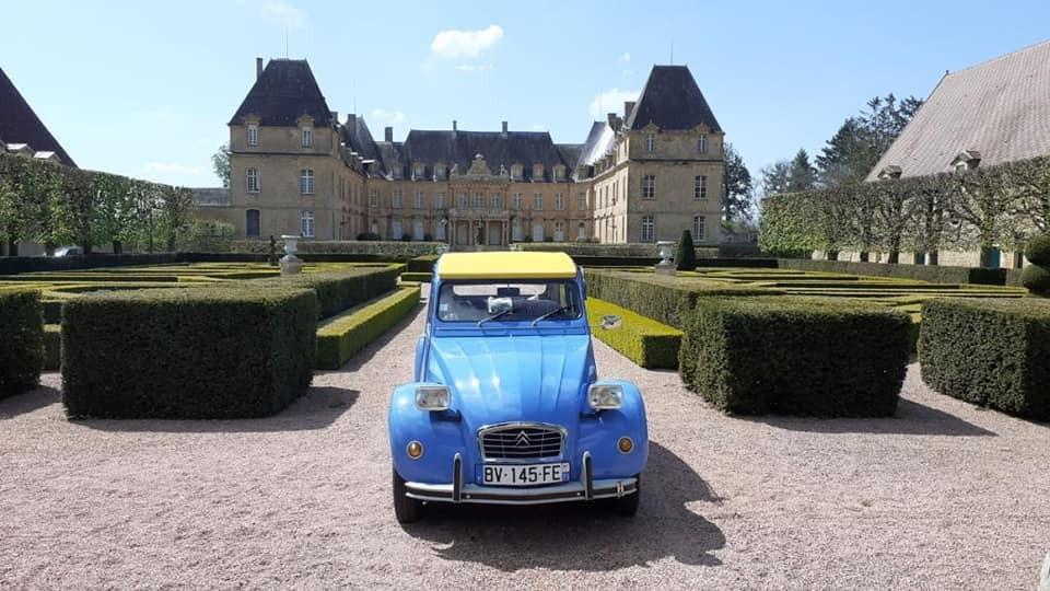 Deuch veau club charolais chateau de dree